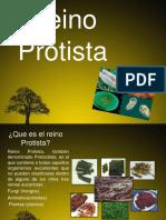 7 Protista