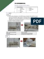 Procedimiento Experimental (4)