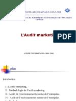 L_AUDIT_MARKETING_-_FSJES_TANGER.pdf