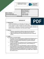 Informe Densidad API