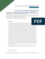 Fisiopatología de La Hidrocefália Idiopática de Presión Normal (Parte 3) Sistema Glinfático.