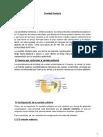 Triangulos Del Cuello PDF