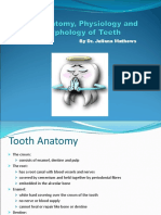 Power Point the Anatomy Physiology and Morphology of Teeth