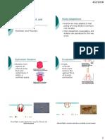 IVa-skele&muscles.pdf
