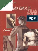 Anatomia omului - Florica Tibea.pdf