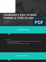 Chargaff's Rule of Base Pairing & Types Of