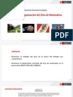 2 Enfoque Organizacion Matematica