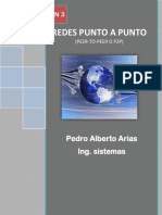Redes punto a punto.pdf