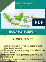 (2)HAM