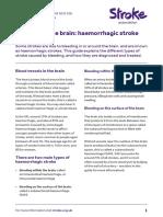 bleeding_in_the_brain_haemorrhagic_stroke.pdf