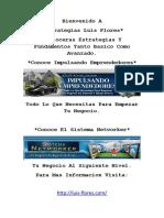 Estrategias Luis Flores 1