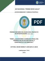 PRIMER INFORME DE AVANCE.pdf