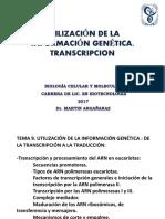 transcripción 2017