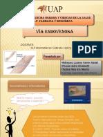 viaendovenosa-110921213448-phpapp02