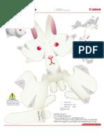 Canon-Conejo-blanco.pdf