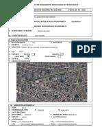 Ficha de Registro Huaca Palomino