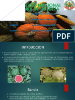 Horna Plagas en Cucurbitaceas