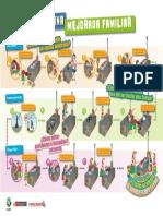 A Infografia Familiar Uso Cocina Mejorada Leña Pichqa