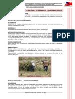 6 Especificaciones Losa Multifunc 01