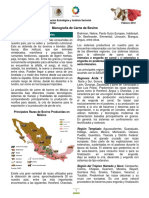 Monografia Carne Bovino 2012.pdf