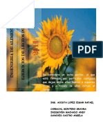 lechosPorosos.pdf