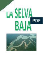 Monografia Selva Baja