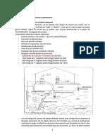 Capitulo IV de Aluviales f