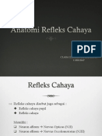Anatomi refleks cahaya.pptx