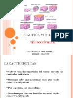 Practica Virtual n 1.Ppt