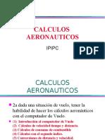 20598610-Calculos-deVuelo-Computador.pdf