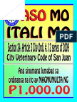 Aso Mo Itali Mo -  SAN JUAN City VETERINARY CODE