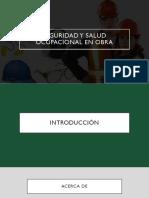 Seguridad y salud - EXPO.pdf