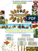 Agrotecnia4propasexual2014 Unprotected 150716070037 Lva1 App6891