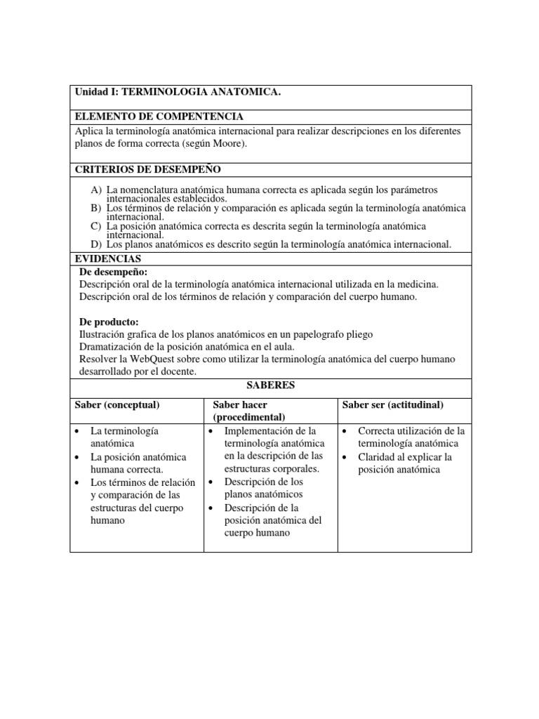 best Posicion Anatomica Del Cuerpo Humano Y Su Terminologia image ...