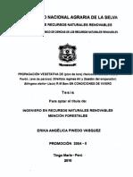 Reglamento_tesis La Molina