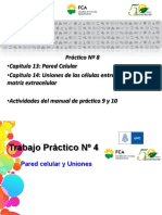 Práctico-8