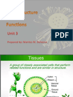 3. Plant Cell and Functions (Student's Copy)