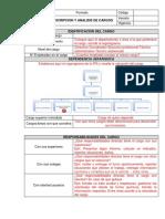 Formato Descripcion y Análisis de Cargos.docx