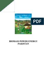 Biomass Power Energy Pakistan
