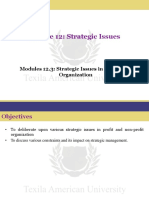 Modules 12.3- Strategic Issues in Non-profit Organization