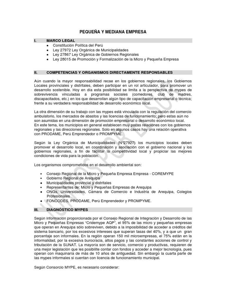 Plan Mypes Pequeñas Y Medianas Empresas Turismo