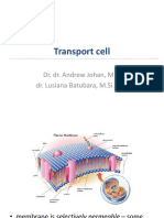 Transport cell.pdf