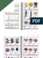 Catalog Flori Severin