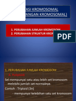 4.Mutasi Kromosom