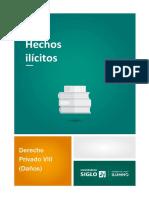 Hechos ilícitos (1)
