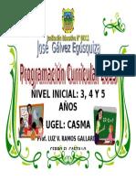 Proyecto Curricular Luz Ventura