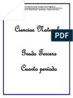 PLANEADOR CIENTIAS NATURALES.docx