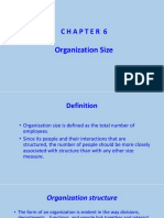 1.Chapter 6 - Organization Size.pptx