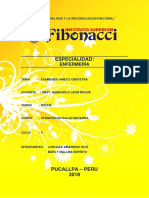 CARATULA FIBONNACI