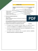 PANEZ_P_EF.docx